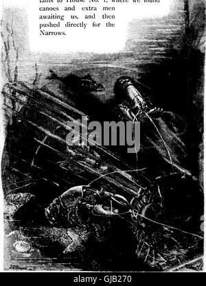Deporte con pistola y varilla en maderas americanas y aguas (microforma) (1883)