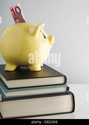 Euro libros alcancía