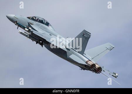 Marina de los Estados Unidos, Boeing F/A-18F Super Hornet cazas multirole.