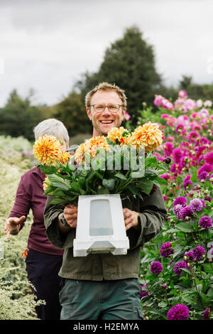 Dos personas trabajando en un vivero de flores orgánicas, flores de corte para arreglos florales y pedidos comerciales.