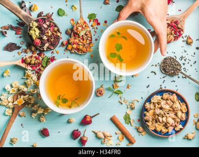 Dos tazas de té de hierbas saludables con menta, canela, rosa y flores secas de manzanilla en diferentes cucharas, Woman's mano sujetando una taza sobre fondo azul. Foto de stock