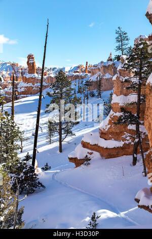 Vista panorámica del Parque Nacional Bryce Canyon durante el invierno