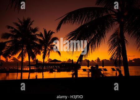 Fondo playa tropical con palmeras silueta al atardecer. Efecto Vintage.