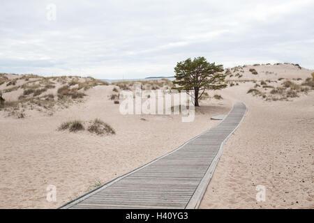 Sendero de madera y dunas de arena en la playa cerca de Yyteri Pori, Finlandia Foto de stock