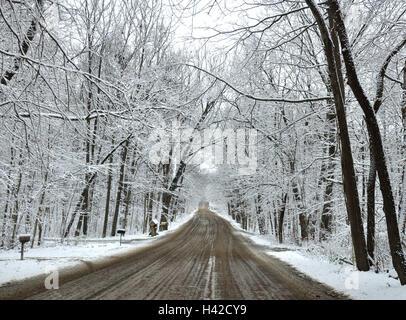 En el invierno de Michigan backwoods
