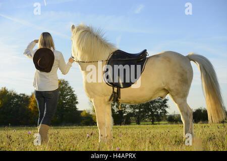 Adolescente, un caballo, un caballo islandés, pradera, de pie, vista posterior, Foto de stock