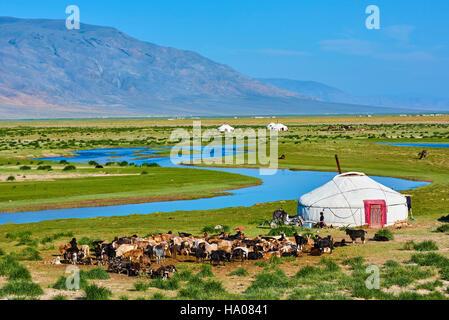 Mongolia, Bayan-Ulgii provincia, oeste de Mongolia, campamento nómada del pueblo kazajo en la estepa