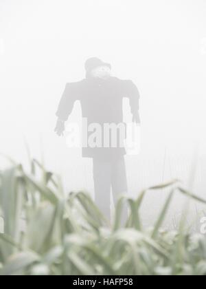 El Espantapájaros en la niebla en una mañana brumosa