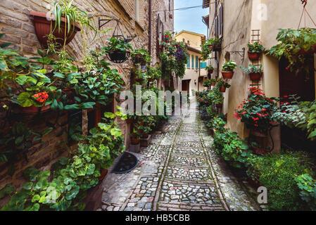 Sorprendente apariencia de calles llenas de flores de Spello, en Umbría.