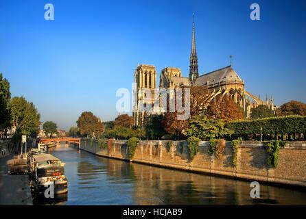 La Catedral de Notre Dame en Île de la Cité, una de las islas en el río Sena, París, Francia.