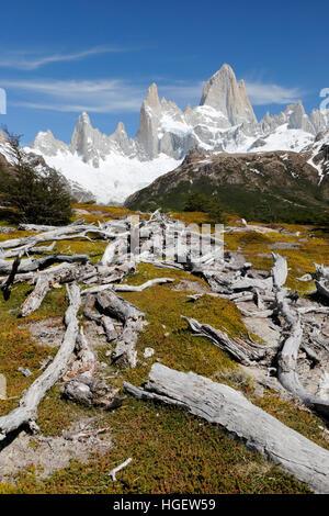 Vista del Monte Fitz Roy en la Laguna de Los Tres trail, El Chalten, Patagonia Argentina, Sudamérica