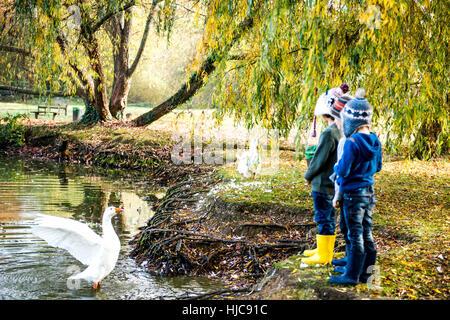 Tres jóvenes, de pie al lado del lago, viendo goose en agua