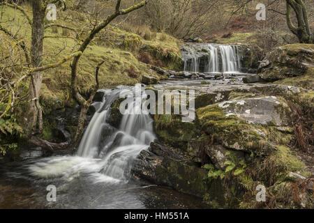 Uno de los Blaen y Glyn Cascadas, sobre el río Caerfanell, (afluente del Usk), Brecon Beacons.