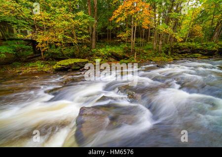 Una pequeña cascada (cascada) de río en Estonia