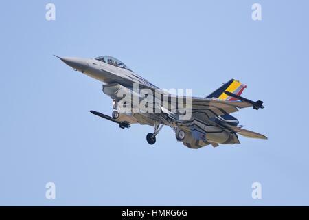 Componente Aéreo belga de combate F-16 Falcon
