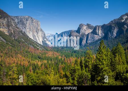 Classic vista de túnel del pintoresco valle de Yosemite con la famosa El Capitan y Half Dome alpinismo cumbres sobre un día hermoso con cielo azul, California