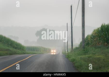 Llegando en coche foggy dos vías Foto de stock