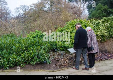 Londres, Reino Unido - 18 de febrero de 2017: Una pareja de ancianos jubilados ancianos relaja al Real Jardín Botánico de Kew. Foto de stock