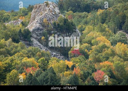 Colores de otoño los halos Charlton lago Whitefish, nr Falls, distrito de Sudbury, Ontario, Canadá
