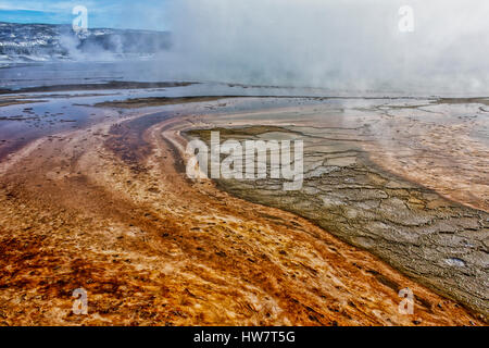 Mat bacteriana en Grand Prismatic Hot Spring, el Parque Nacional Yellowstone, Wyoming.