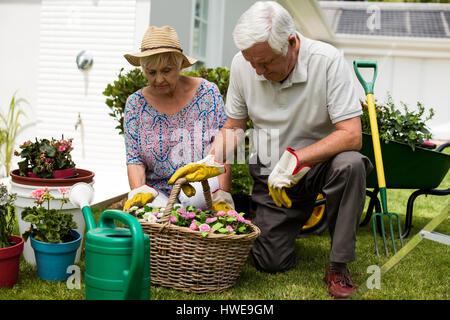 Las parejas ancianas jardinería juntos en el patio