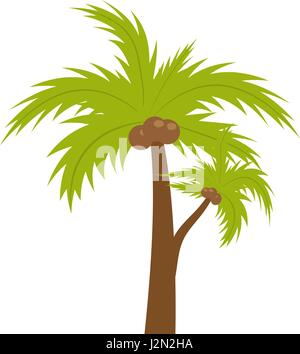 Palm Tree. Icono Plano, estilo de dibujos animados. Verano, playa concepto aislado sobre fondo blanco. Ilustración Foto de stock