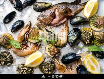 Marisco fresco con hierbas y limón sobre el hielo. Camarones, pescado, mejillones, vieiras en bandeja metálica de acero