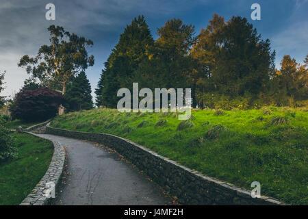 Una ruta walkinng atraviesa una zona cubierta de hierba verde y exuberante con árboles forestales de tollymore mostrando en el fondo.