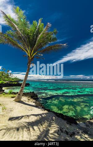 Infinity pool de roca natural con palmeras sobre los océanos tropicales y laguna, Samoa