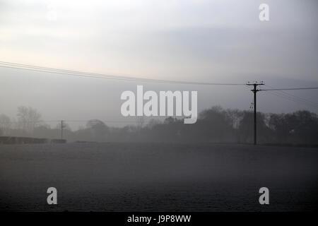 Poste de telégrafo y el campo en una helada mañana, lías brabourne, Ashford, Kent, Inglaterra, Reino Unido.