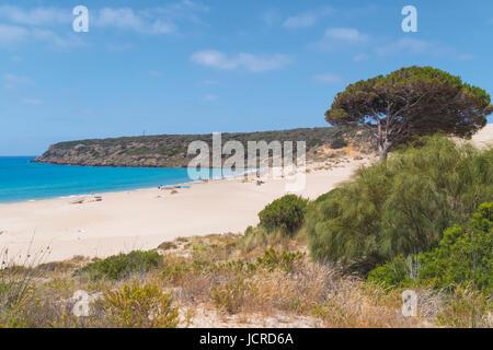 Bolonia, Costa de la Luz, Cádiz, Andalucía, sur de España. La playa de Bolonia. Playa de Bolonia.