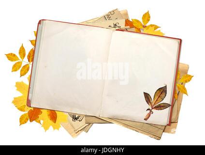 Vintage Retro grunge otoño de color hojas caer. Hermoso fondo grunge ...