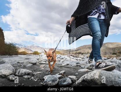 Con el cuello hacia abajo la vista de Mujer paseando a un perro en el pedregoso cauce
