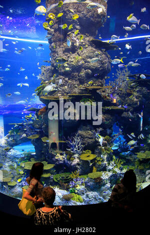 Los turistas en S.E.A. Acuario. La isla de Sentosa. Singapur. Singapur.