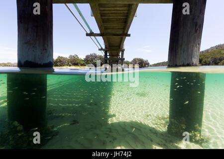 Pequeños peces escuela juntos bajo un muelle en el agua color turquesa en el agua dividir imagen tomada en Australia.