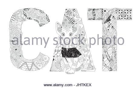 Blanco y negro gato con forma inusual patrón fur marcas en la cabeza ...