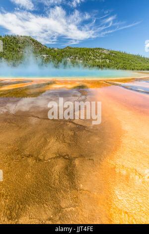 Los vívidos colores del arco iris de la Grand Prismatic Spring, en el Parque Nacional Yellowstone, Wyoming