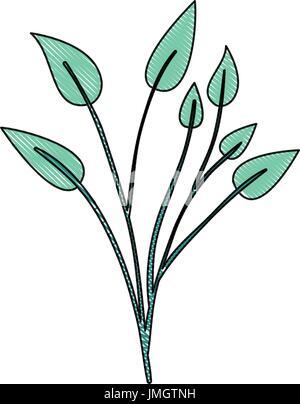 Crayola silueta de luz verde color de planta de hojas lobuladas ...