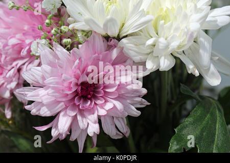 Un arreglo floral de rosas y flores blancas
