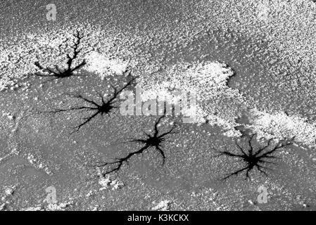 Agujeros estelares en un icebound lago alpino. Formas abstractas especial desarrollada a partir de la nieve fresca de luz.