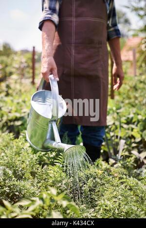 Mis plantas necesitan un montón de agua dulce