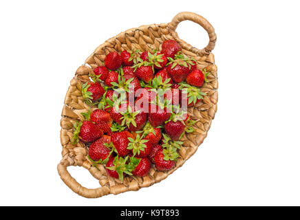 Fresas rojas en una canasta de madera costos entre las camas de fresa en el campo