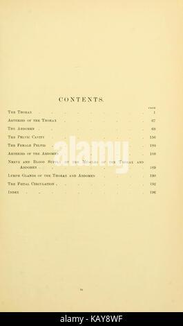 La anatomía topográfica del tórax y abdomen del caballo (página 39 ...