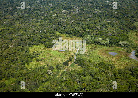 Bosque lluvioso, Parque Nacional de Iguaçu por Cataratas del Iguazú, Estado de Paraná, Brasil, Sudamérica - aéreo Foto de stock