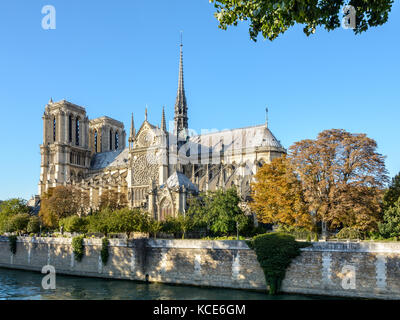 Vista de tres cuartos del lado sur de la catedral Notre-Dame de París por una soleada tarde a principios del otoño, con el río Sena en el foreg
