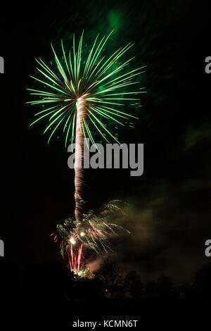 Filmación nocturna de fuegos artificiales. el verde y blanco estelas de luz de la pirotecnia forman un patrón abstracto que parece una palmera gigante.