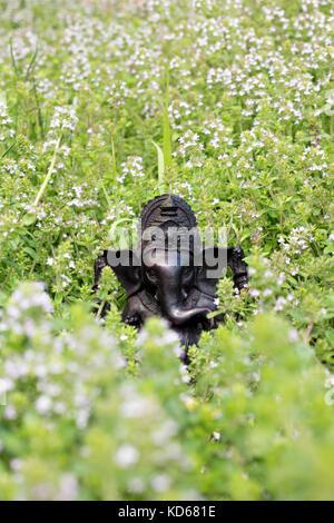 Dios hindú Ghanesa. ganesha ídolo en la pasto verde Foto de stock