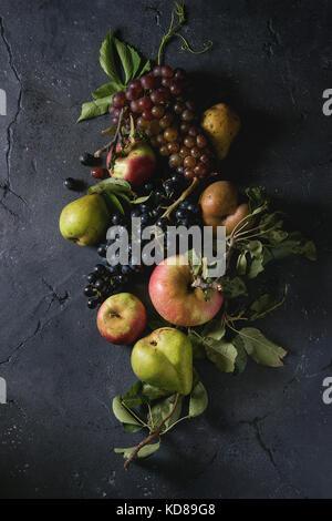 Variedad de otoño frutas maduras manzanas orgánicas, tres tipos de uvas, peras con hojas más textura del fondo oscuro. Vista superior con espacio backgrou alimentos.