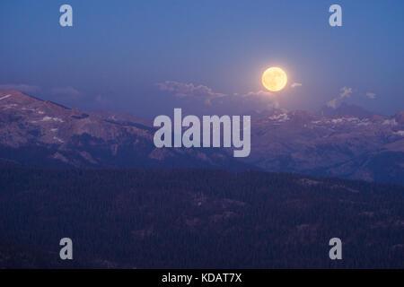 Luna llena que se eleva sobre las montañas, Parque Nacional Sequoia, California, Estados Unidos Foto de stock