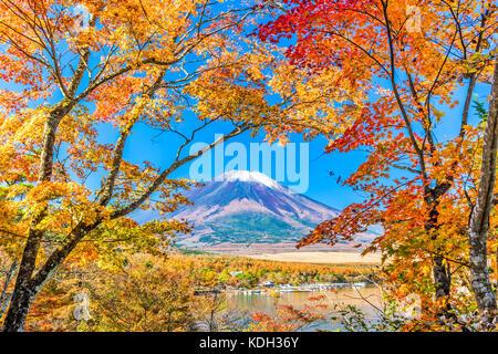 El monte Fuji, Japón desde el lago Yamanaka en otoño.